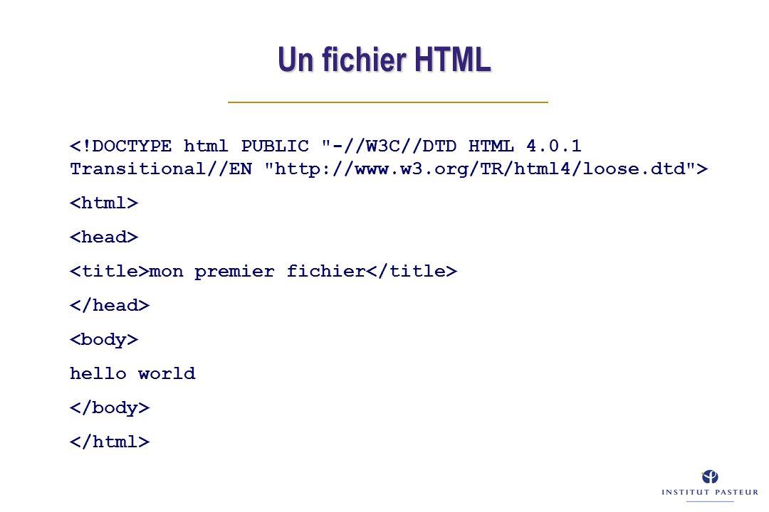 mon premier fichier hello world Un fichier HTML