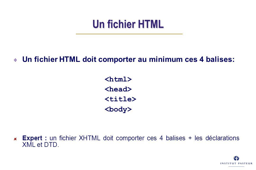 Un fichier HTML Un fichier HTML doit comporter au minimum ces 4 balises: Expert : un fichier XHTML doit comporter ces 4 balises + les déclarations XML et DTD.