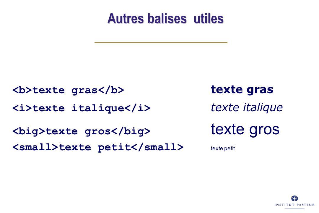 texte gras texte gras texte italique texte italique texte gros texte gros texte petit texte petit Autres balises utiles