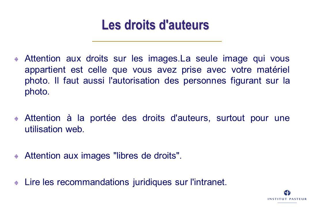 Les droits d auteurs Attention aux droits sur les images.La seule image qui vous appartient est celle que vous avez prise avec votre matériel photo.