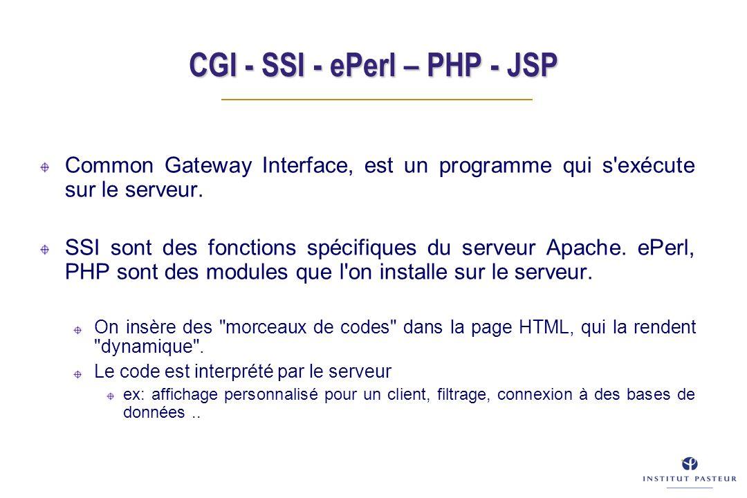 CGI - SSI - ePerl – PHP - JSP Common Gateway Interface, est un programme qui s exécute sur le serveur.