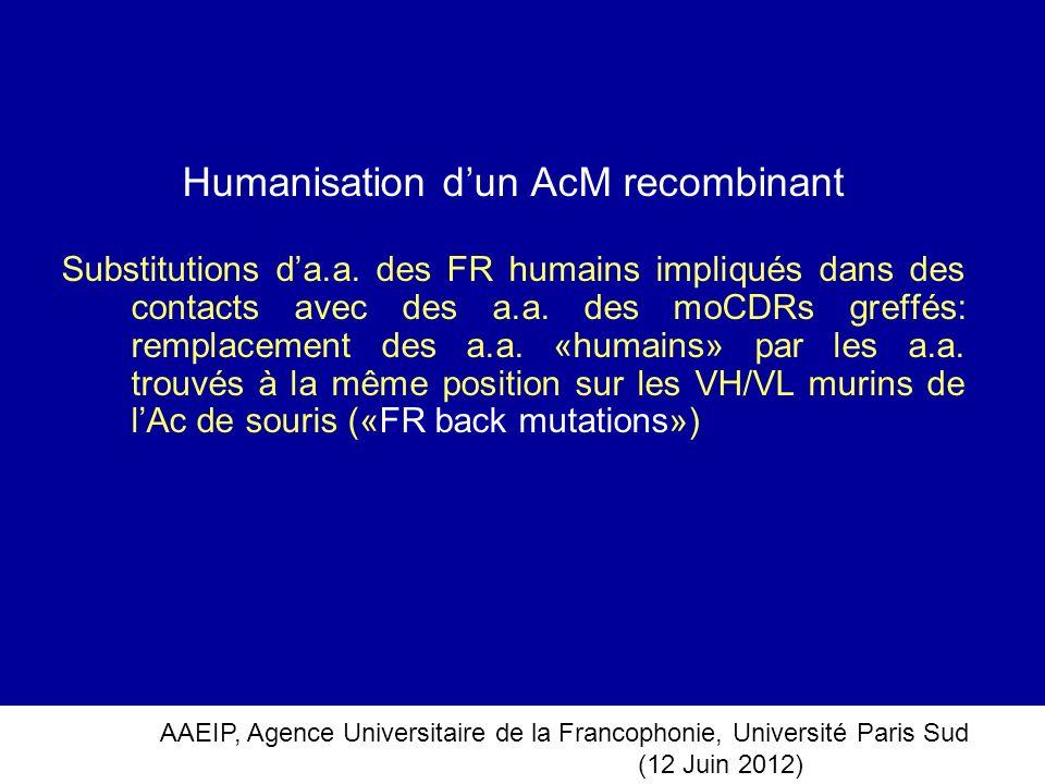 AAEIP, Agence Universitaire de la Francophonie, Université Paris Sud (12 Juin 2012) Humanisation dun AcM recombinant Substitutions da.a. des FR humain