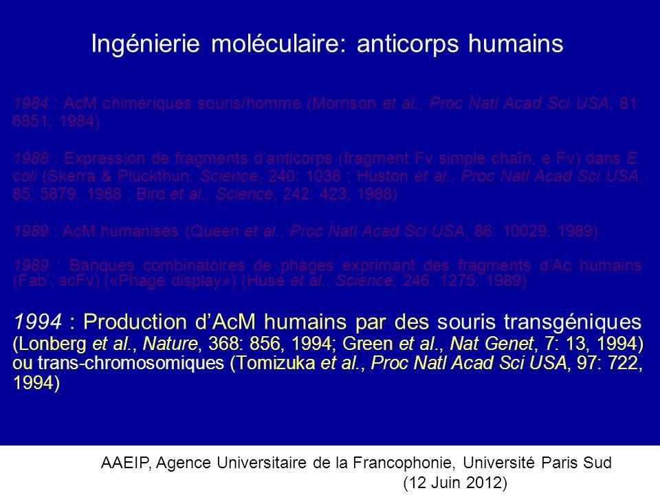 AAEIP, Agence Universitaire de la Francophonie, Université Paris Sud (12 Juin 2012) Ingénierie moléculaire: anticorps humains 1984 : AcM chimériques s