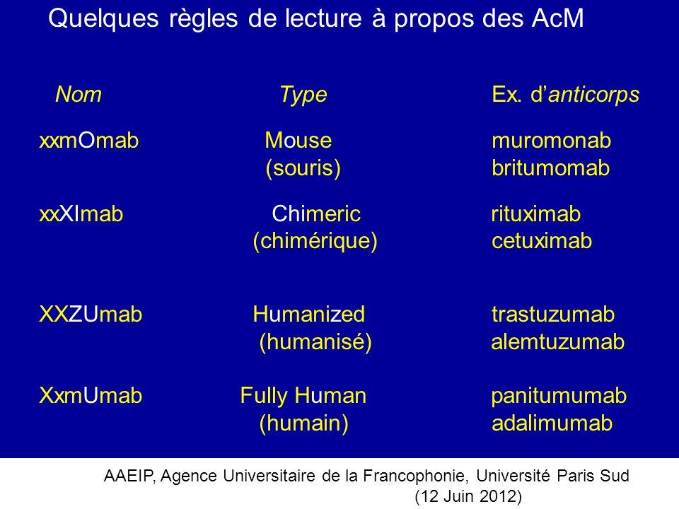 AAEIP, Agence Universitaire de la Francophonie, Université Paris Sud (12 Juin 2012) Quelques règles de lecture à propos des AcM Nom Type Ex. danticorp