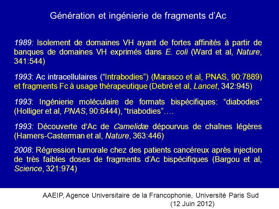 AAEIP, Agence Universitaire de la Francophonie, Université Paris Sud (12 Juin 2012) Génération et ingénierie de fragments dAc 1989: Isolement de domai