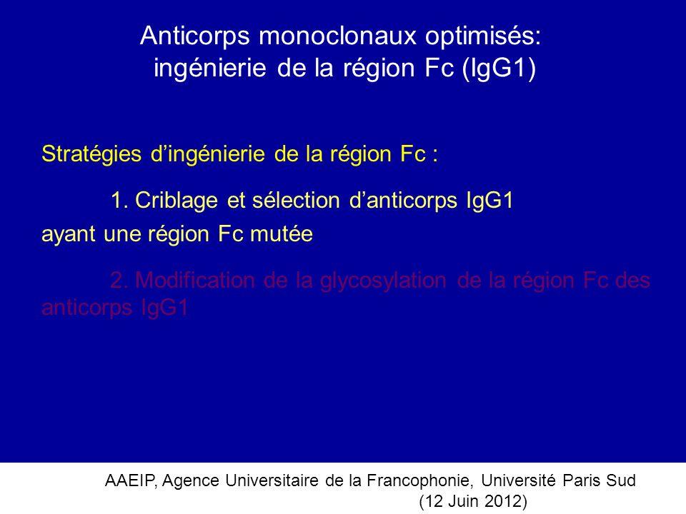 AAEIP, Agence Universitaire de la Francophonie, Université Paris Sud (12 Juin 2012) Stratégies dingénierie de la région Fc : 1. Criblage et sélection