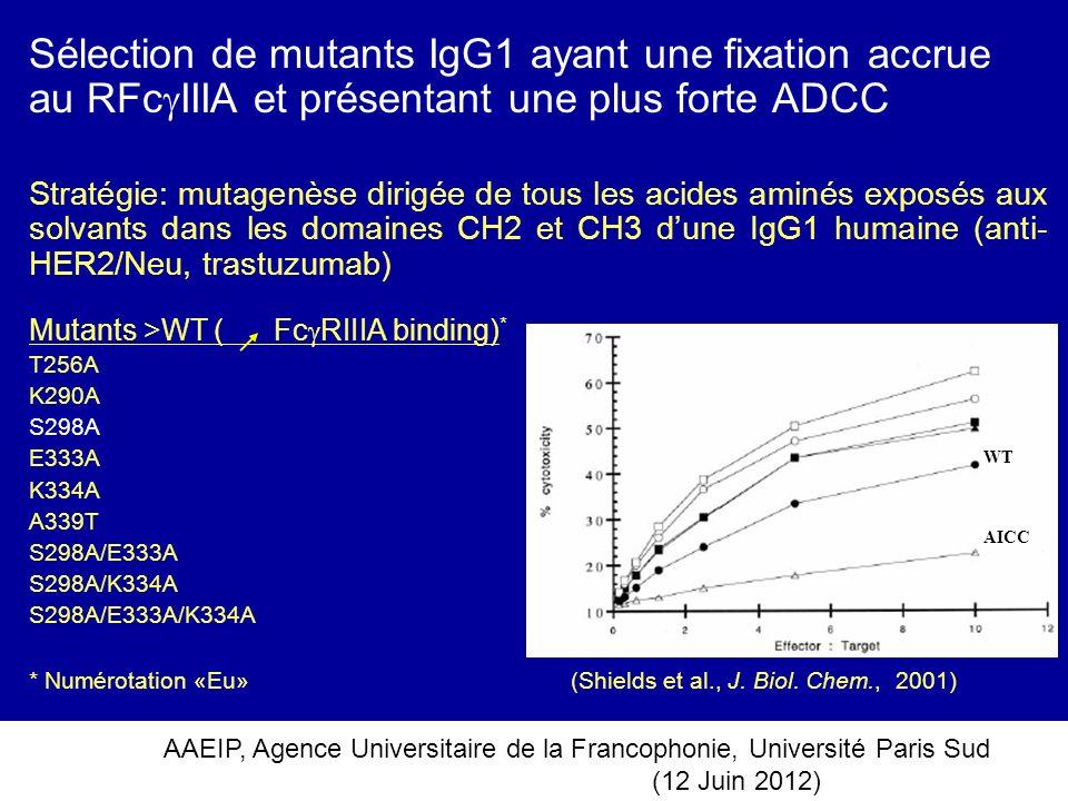 AAEIP, Agence Universitaire de la Francophonie, Université Paris Sud (12 Juin 2012) Sélection de mutants IgG1 ayant une fixation accrue au RFc IIIA et