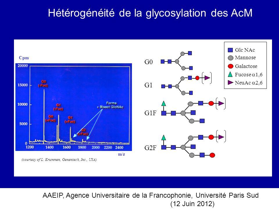 AAEIP, Agence Universitaire de la Francophonie, Université Paris Sud (12 Juin 2012) Glc NAc Mannose Galactose Fucose 1,6 NeuAc 2,6 m/z Cpm G0 G1 G1F G