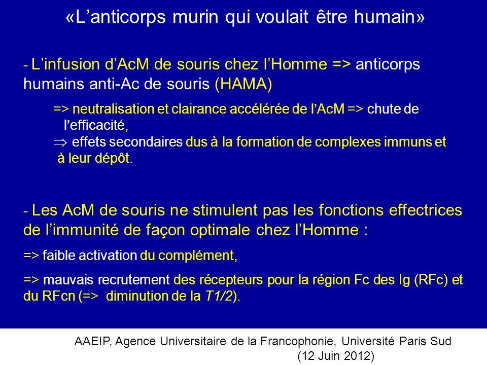 AAEIP, Agence Universitaire de la Francophonie, Université Paris Sud (12 Juin 2012) «Lanticorps murin qui voulait être humain» - Linfusion dAcM de sou