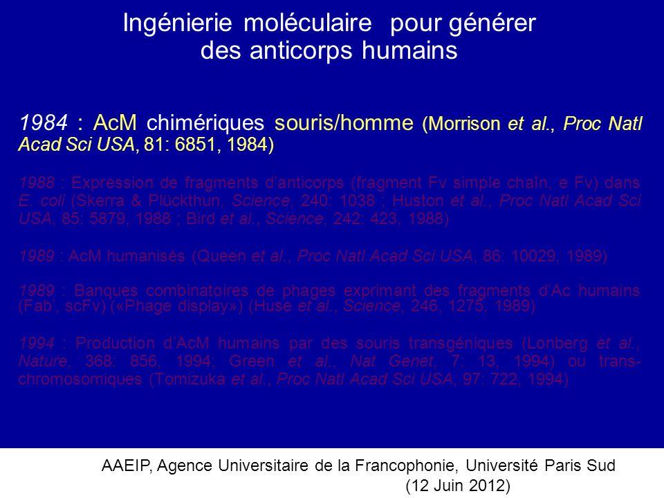 AAEIP, Agence Universitaire de la Francophonie, Université Paris Sud (12 Juin 2012) Ingénierie moléculaire pour générer des anticorps humains 1984 : A