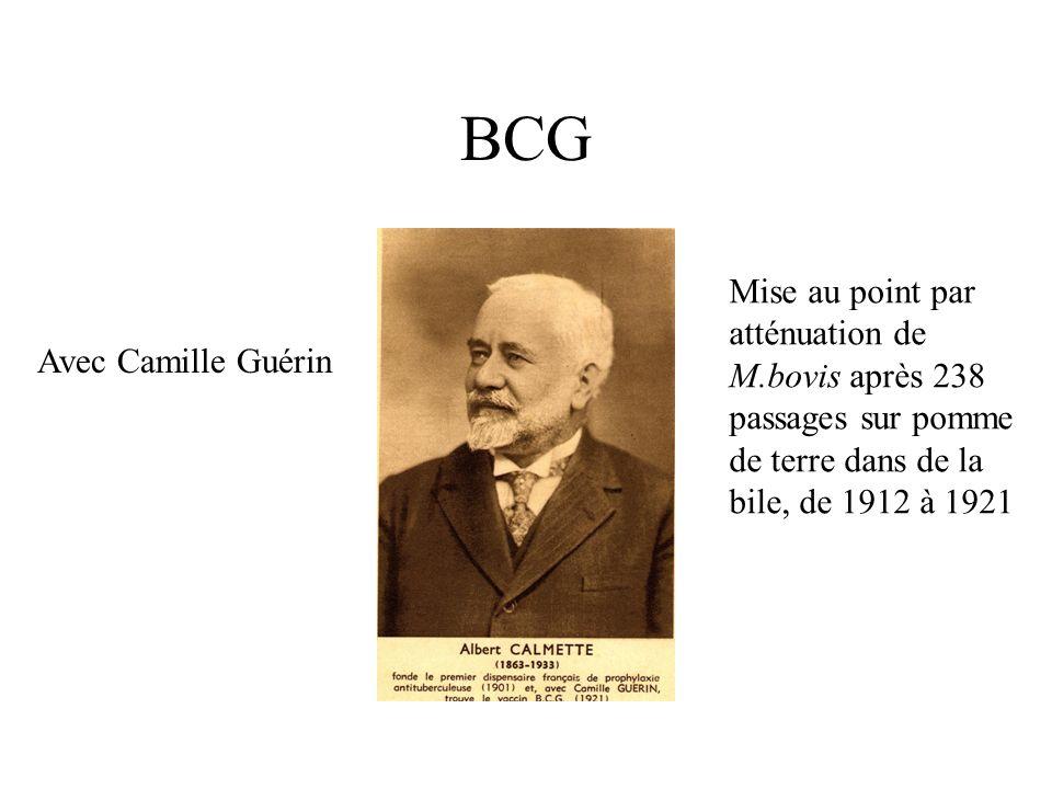 BCG Avec Camille Guérin Mise au point par atténuation de M.bovis après 238 passages sur pomme de terre dans de la bile, de 1912 à 1921