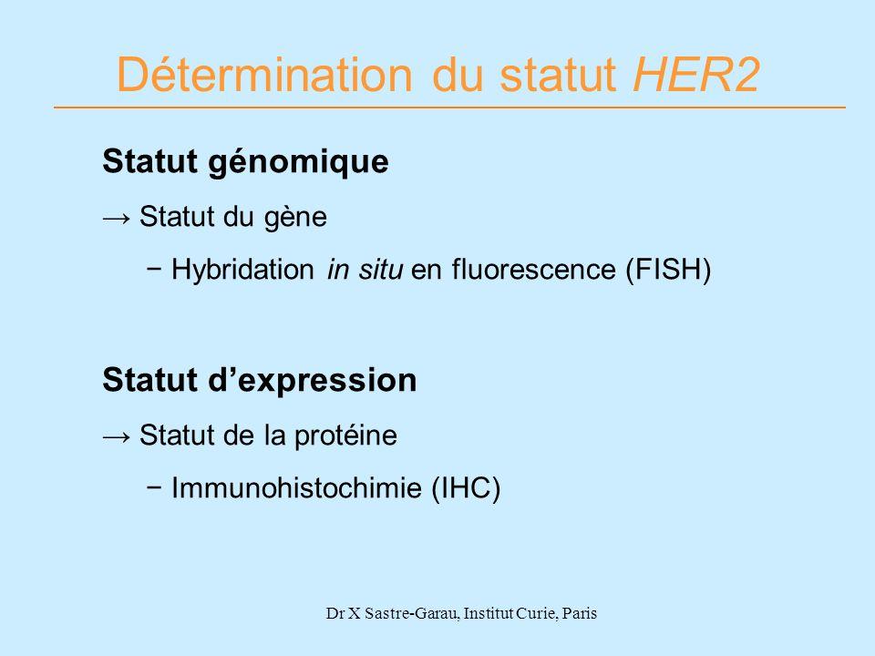 Dr X Sastre-Garau, Institut Curie, Paris Détermination du statut HER2 Statut génomique Statut du gène Hybridation in situ en fluorescence (FISH) Statu