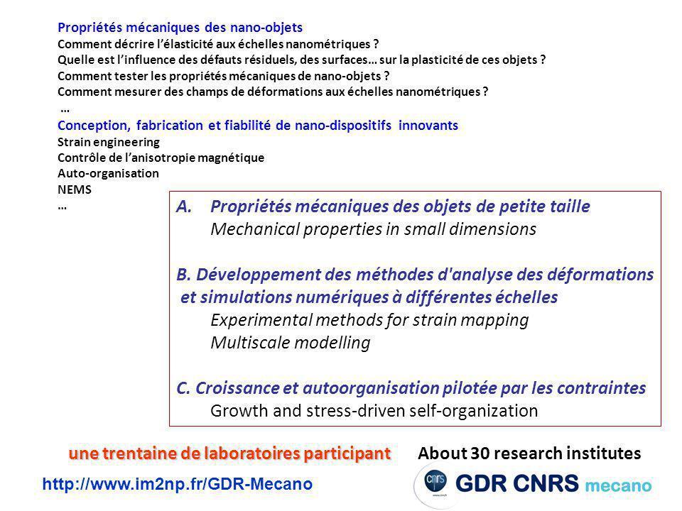 http://www.im2np.fr/GDR-Mecano Propriétés mécaniques des nano-objets Comment décrire lélasticité aux échelles nanométriques .