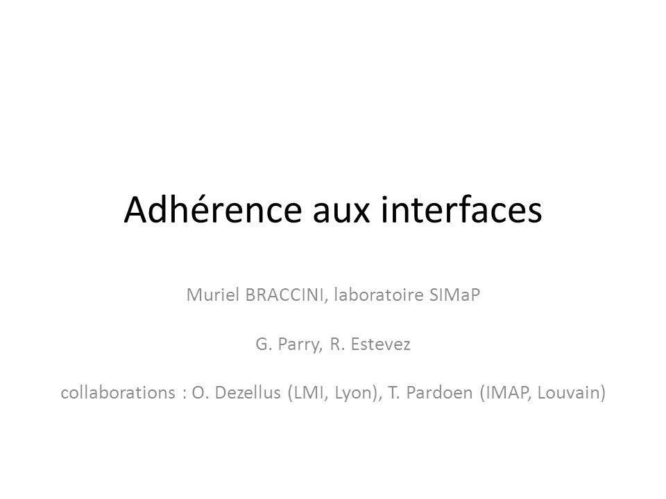 Adhérence aux interfaces Muriel BRACCINI, laboratoire SIMaP G. Parry, R. Estevez collaborations : O. Dezellus (LMI, Lyon), T. Pardoen (IMAP, Louvain)