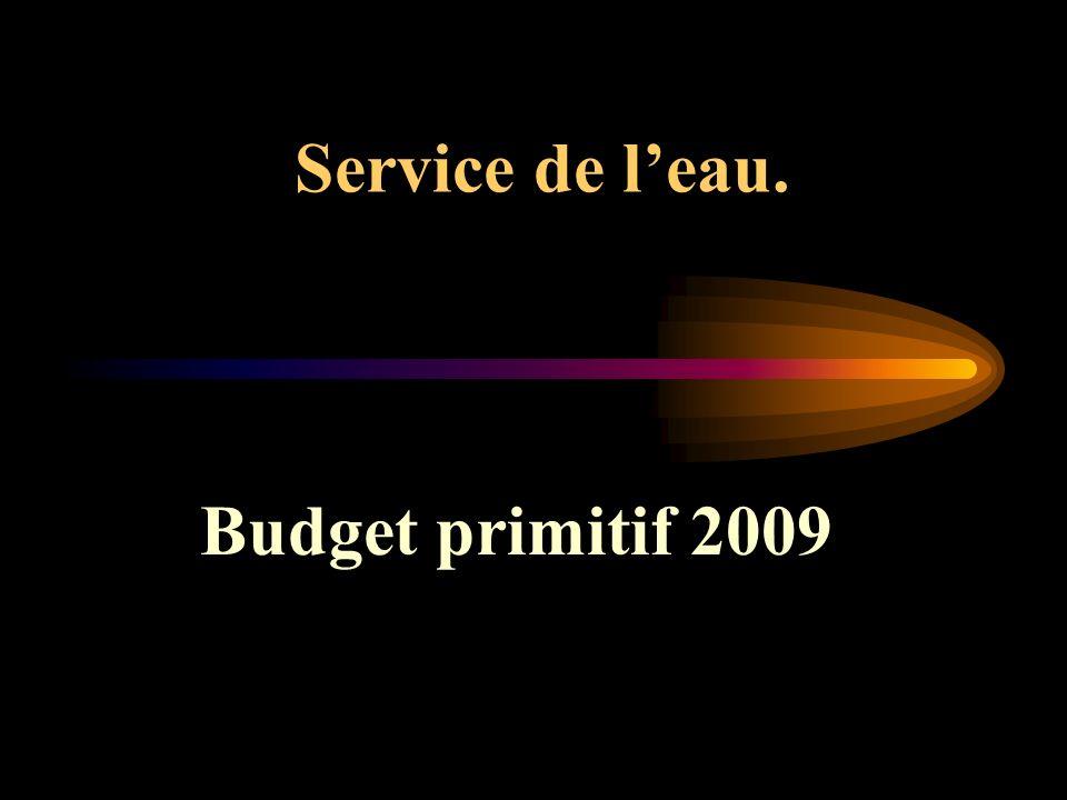 Service de leau. Budget primitif 2009