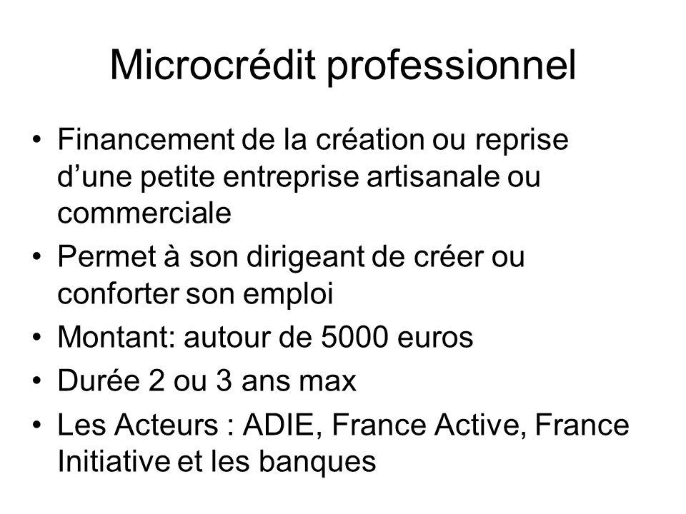 Microcrédit professionnel Financement de la création ou reprise dune petite entreprise artisanale ou commerciale Permet à son dirigeant de créer ou co
