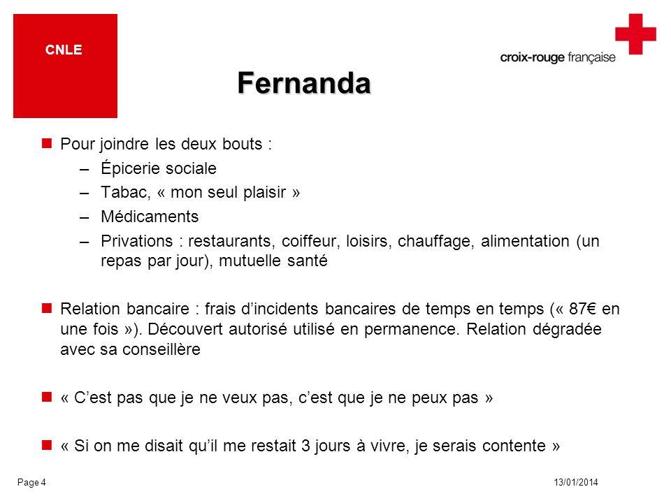 13/01/2014 CNLE Fernanda Pour joindre les deux bouts : –Épicerie sociale –Tabac, « mon seul plaisir » –Médicaments –Privations : restaurants, coiffeur