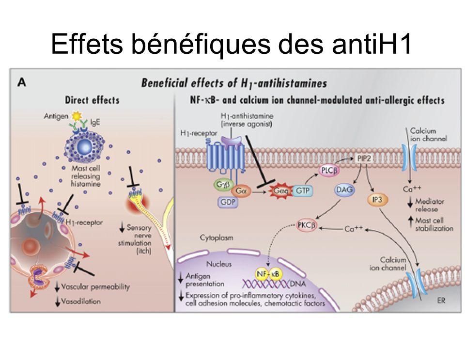 Effets bénéfiques des antiH1