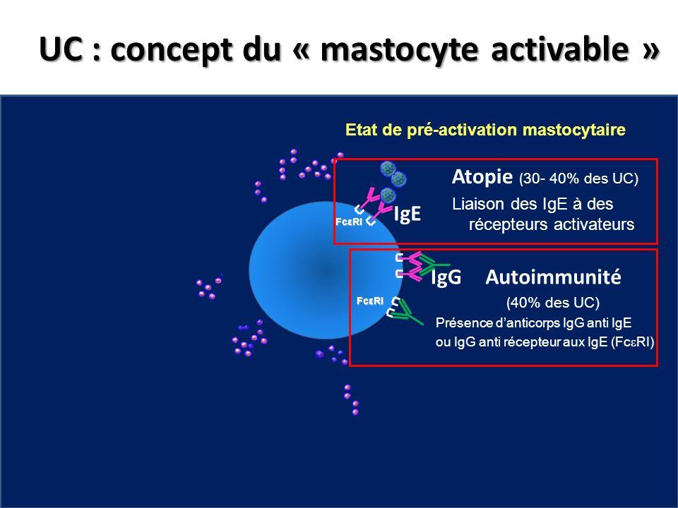 UC : concept du « mastocyte activable » Etat de pré-activation mastocytaire FcεRI IgG Atopie ( 30- 40% des UC) Liaison des IgE à des récepteurs activa