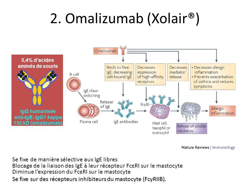 Se fixe de manière sélective aux IgE libres Blocage de la liaison des IgE à leur récepteur FcεRI sur le mastocyte Diminue lexpression du FcεRI sur le