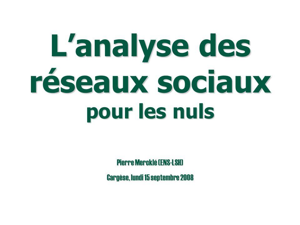 Pierre Mercklé (ENS-LSH) Cargèse, lundi 15 septembre 2008 Lanalyse des réseaux sociaux pour les nuls