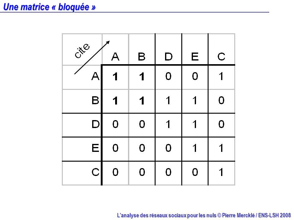 Lanalyse des réseaux sociaux pour les nuls © Pierre Mercklé / ENS-LSH 2008 Une matrice « bloquée »