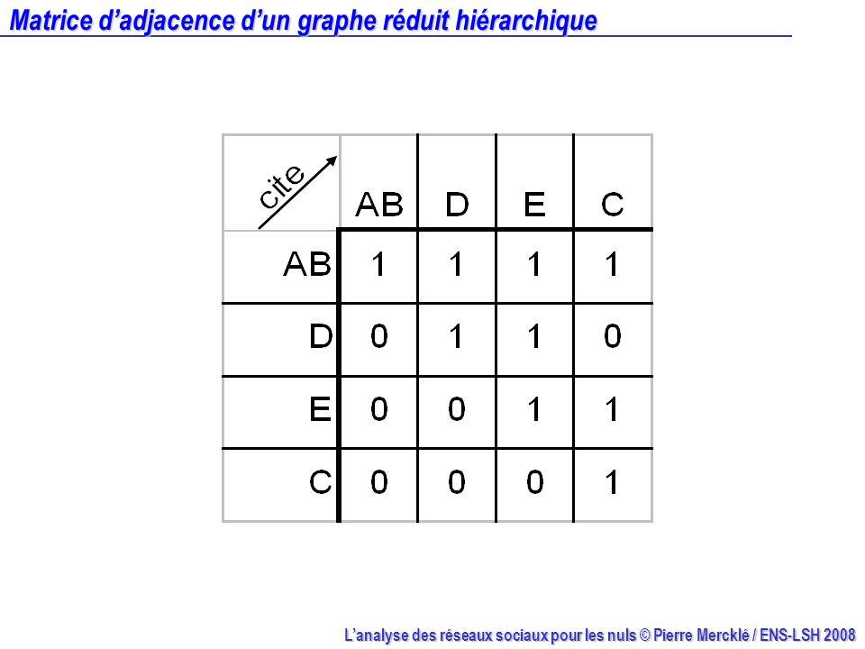 Lanalyse des réseaux sociaux pour les nuls © Pierre Mercklé / ENS-LSH 2008 Matrice dadjacence dun graphe réduit hiérarchique