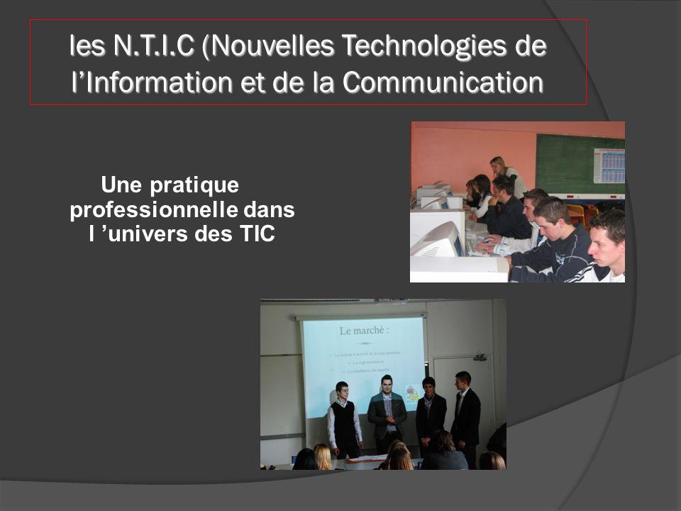 les N.T.I.C (Nouvelles Technologies de lInformation et de la Communication Une pratique professionnelle dans l univers des TIC