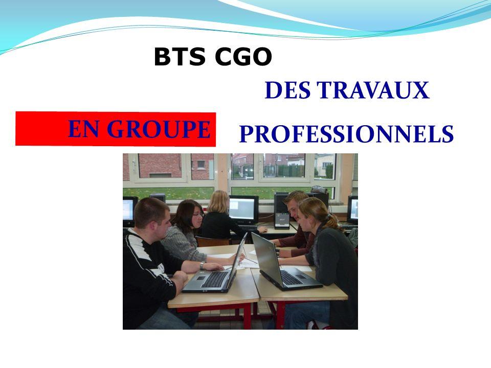 DES TRAVAUX PROFESSIONNELS EN GROUPE BTS CGO