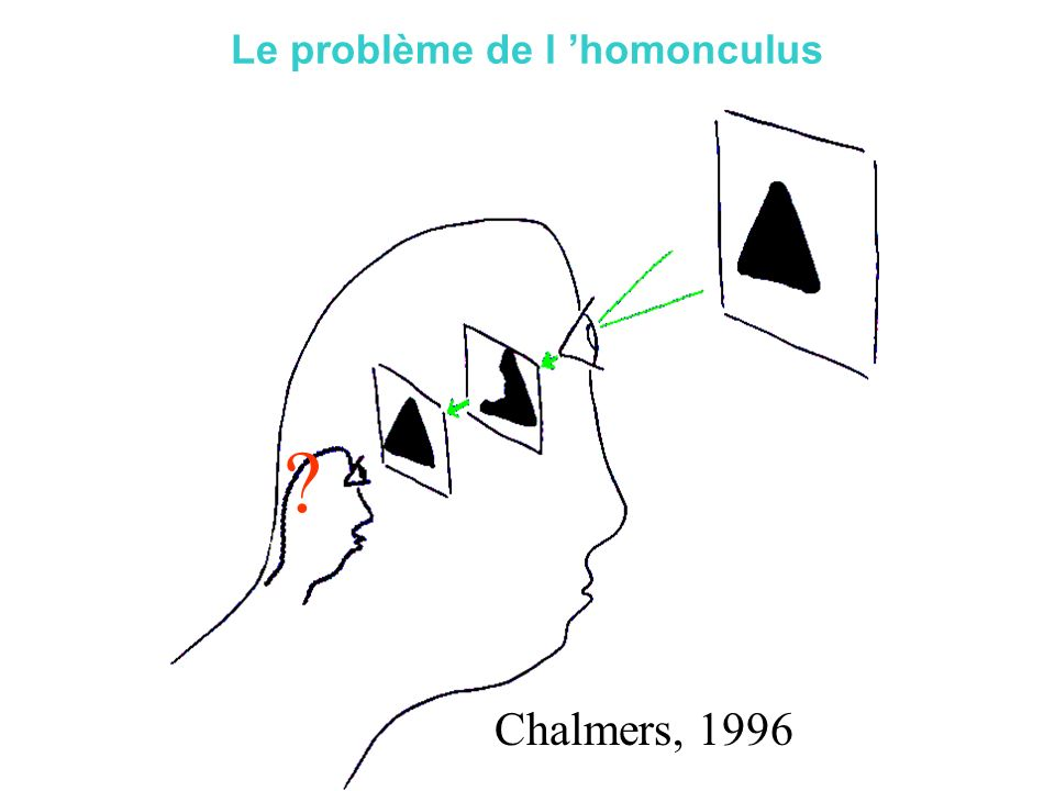Master ENS 2004 - ORegan Chalmers, 1996 Le problème de l homonculus