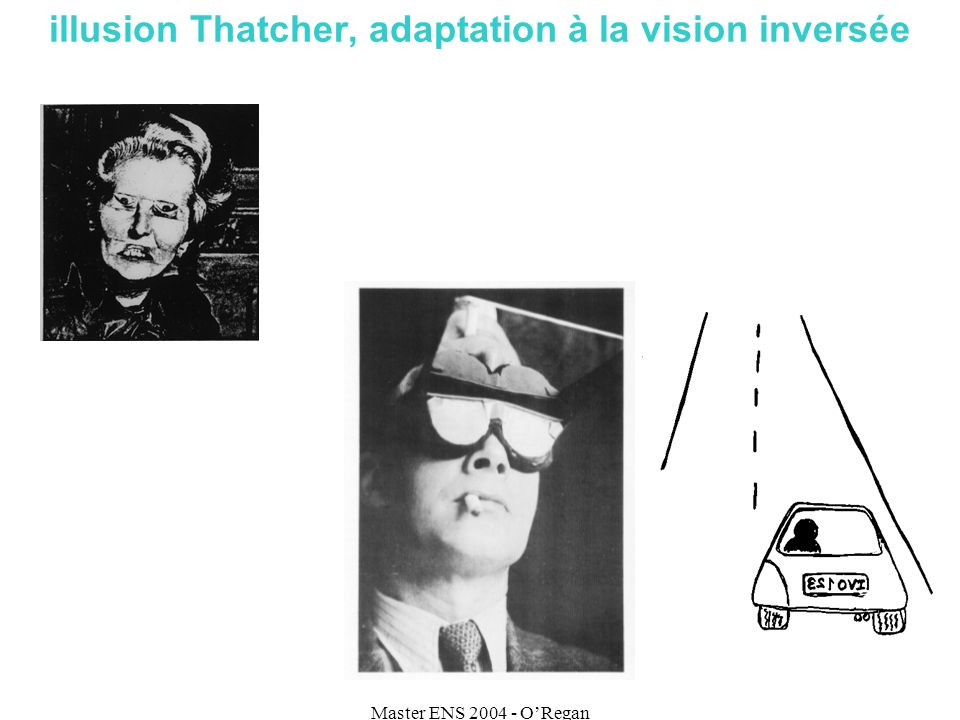 Master ENS 2004 - ORegan illusion Thatcher, adaptation à la vision inversée