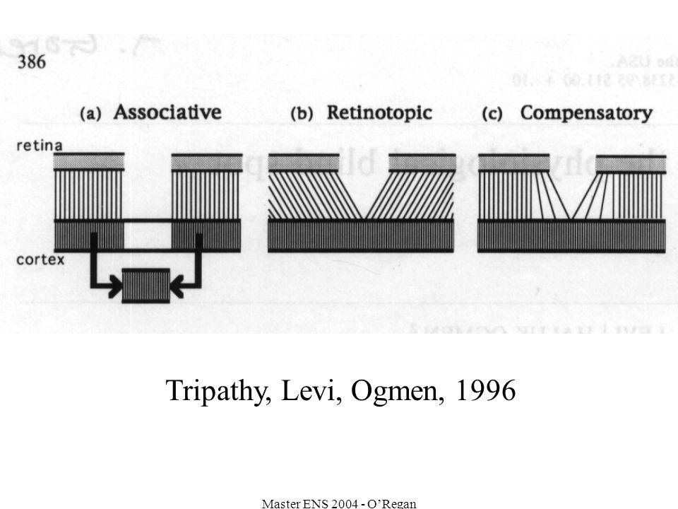 Master ENS 2004 - ORegan Tripathy, Levi, Ogmen, 1996