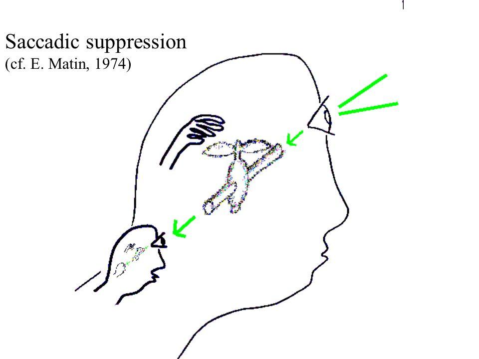 Master ENS 2004 - ORegan Saccadic suppression (cf. E. Matin, 1974)