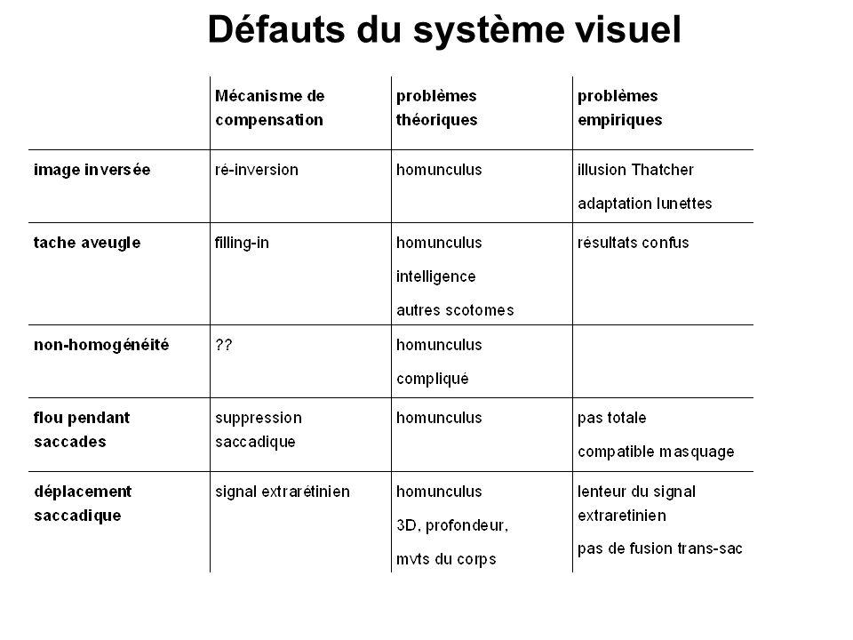 Défauts du système visuel