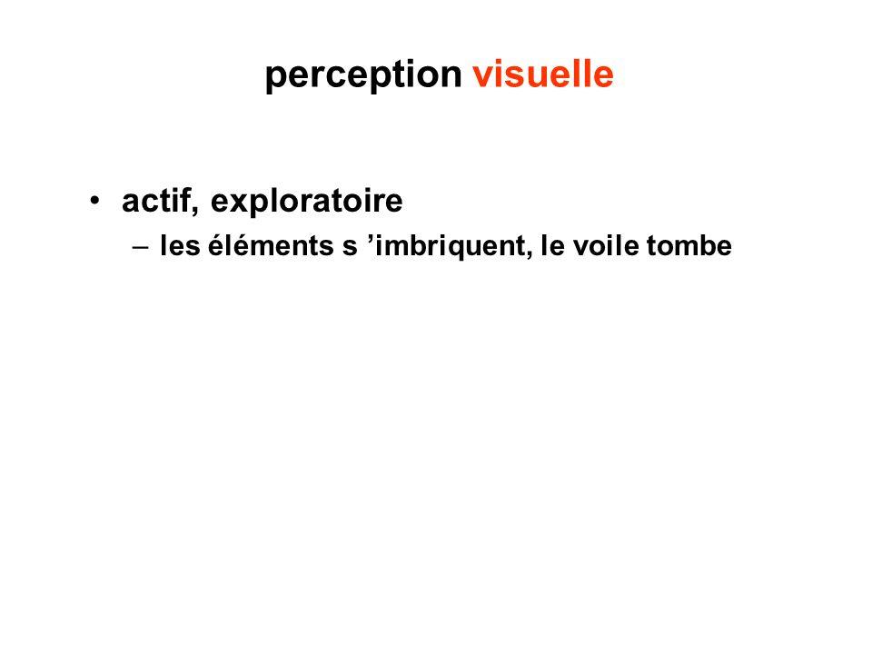perception visuelle actif, exploratoire –les éléments s imbriquent, le voile tombe
