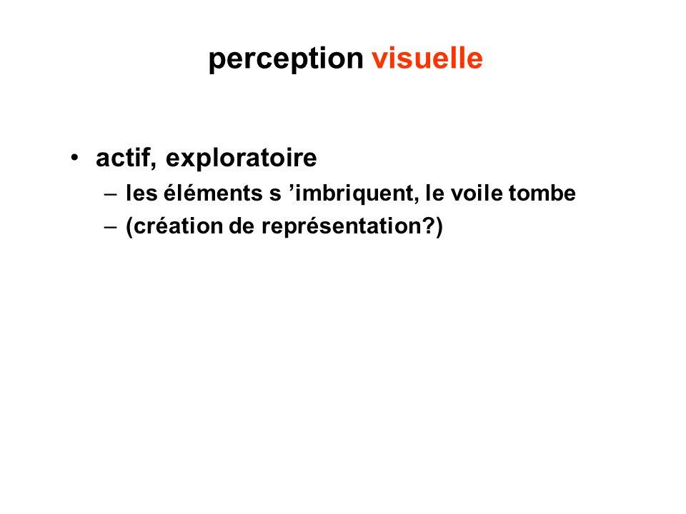 perception visuelle actif, exploratoire –les éléments s imbriquent, le voile tombe –(création de représentation?)