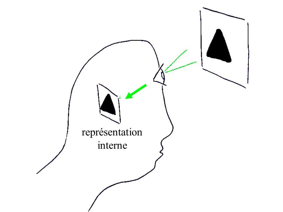 représentation interne