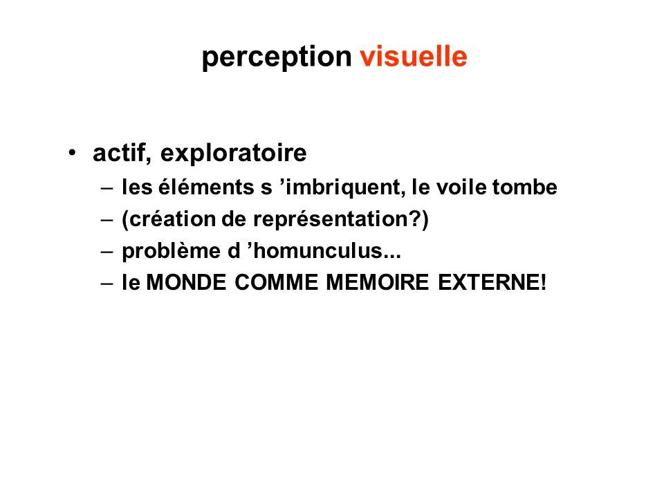 perception visuelle actif, exploratoire –les éléments s imbriquent, le voile tombe –(création de représentation?) –problème d homunculus... –le MONDE