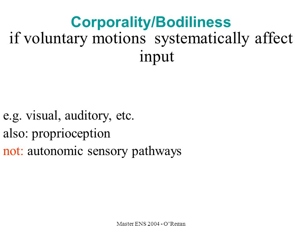 Master ENS 2004 - ORegan Corporality/Bodiliness if voluntary motions systematically affect input e.g.