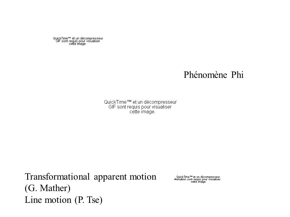 Transformational apparent motion (G. Mather) Line motion (P. Tse) Phénomène Phi