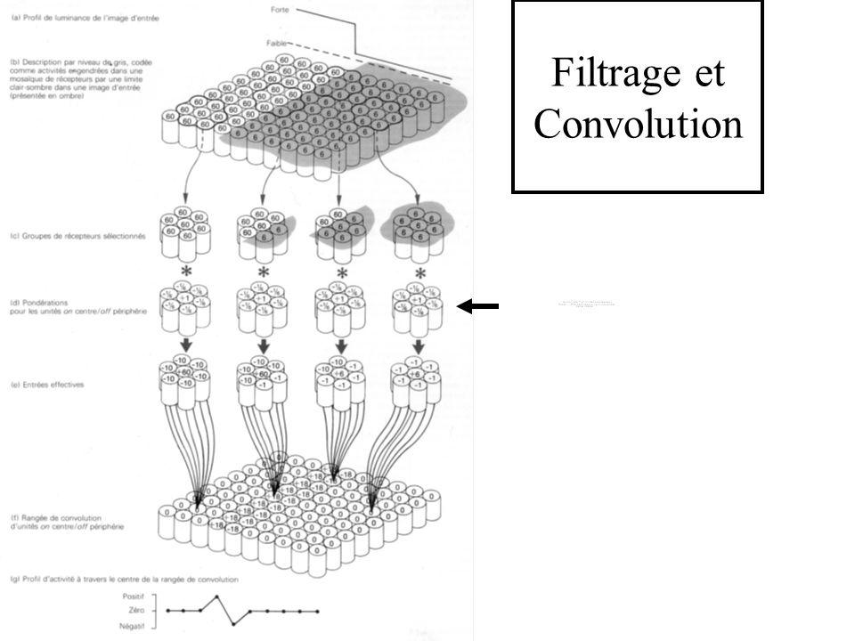 Filtrage et Convolution