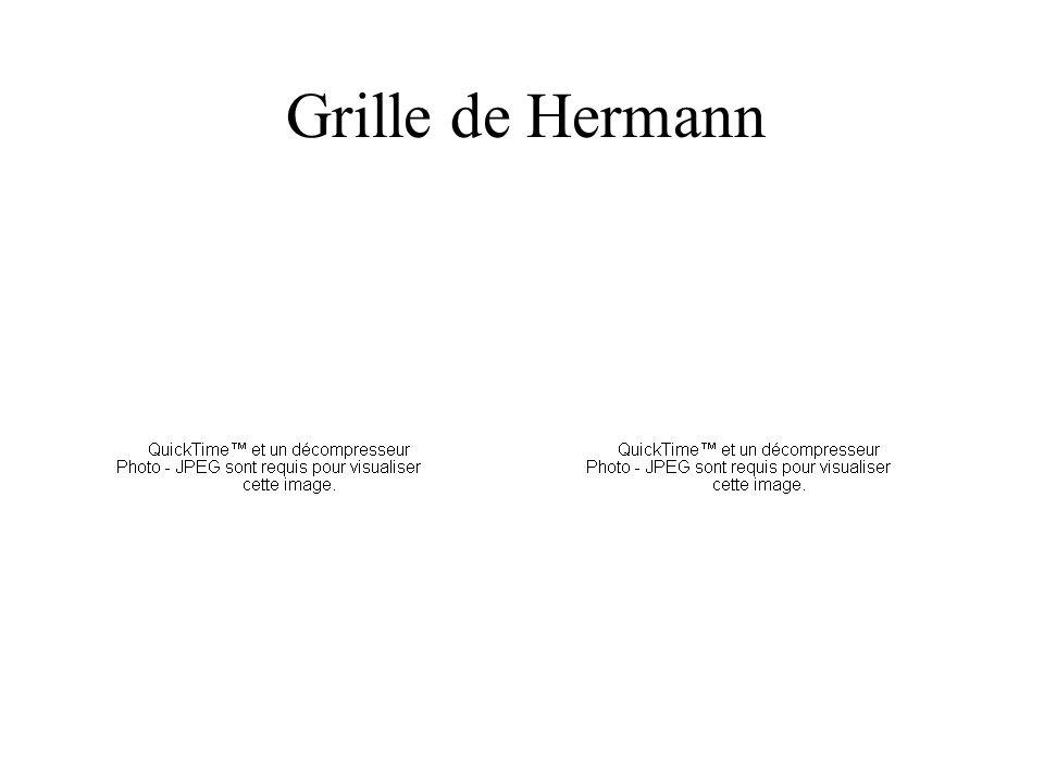 Grille de Hermann