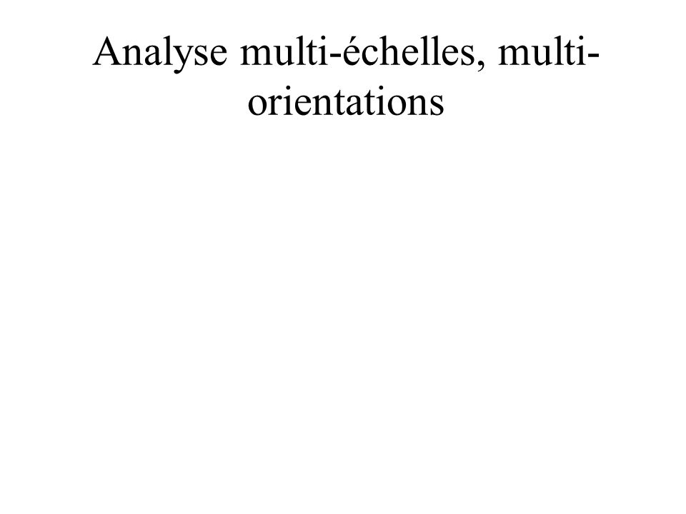 Analyse multi-échelles, multi- orientations