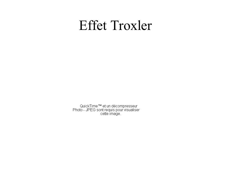 Effet Troxler