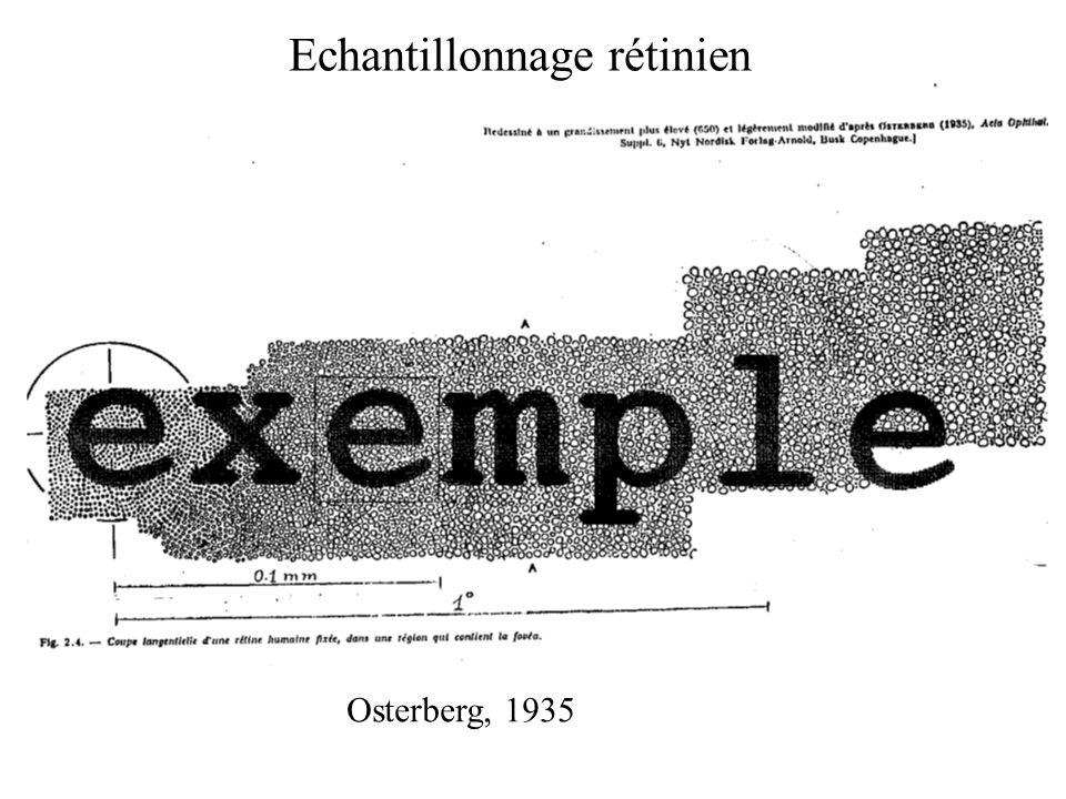 Osterberg, 1935 Echantillonnage rétinien