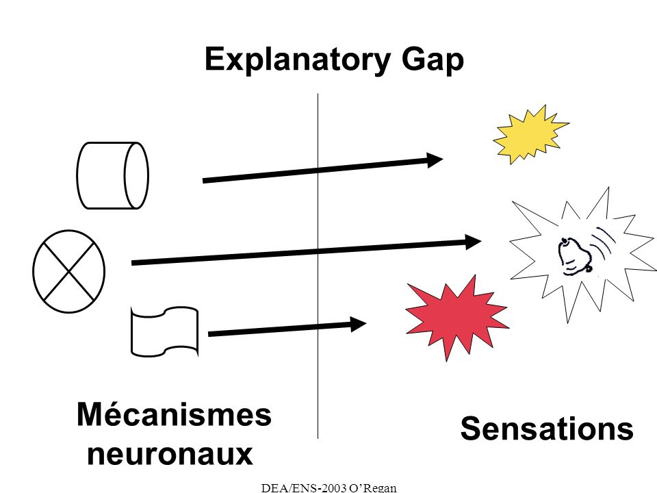 DEA/ENS-2003 ORegan Explanatory Gap Mécanismes neuronaux Sensations