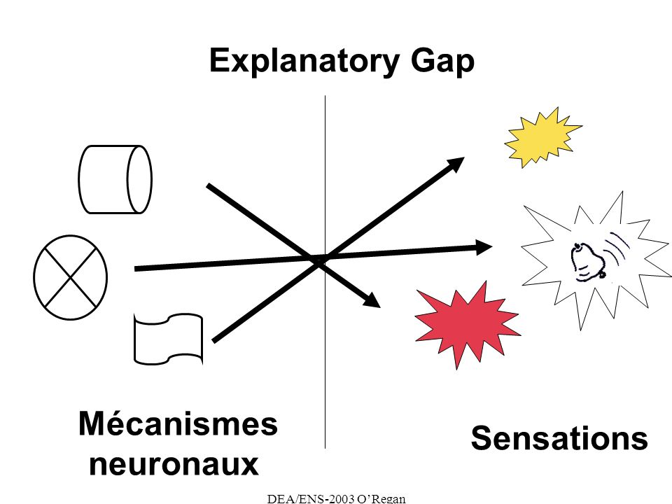 DEA/ENS-2003 ORegan Explanatory Gap Sensations Mécanismes neuronaux