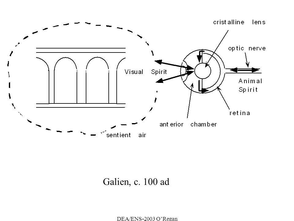 DEA/ENS-2003 ORegan Galien, c. 100 ad