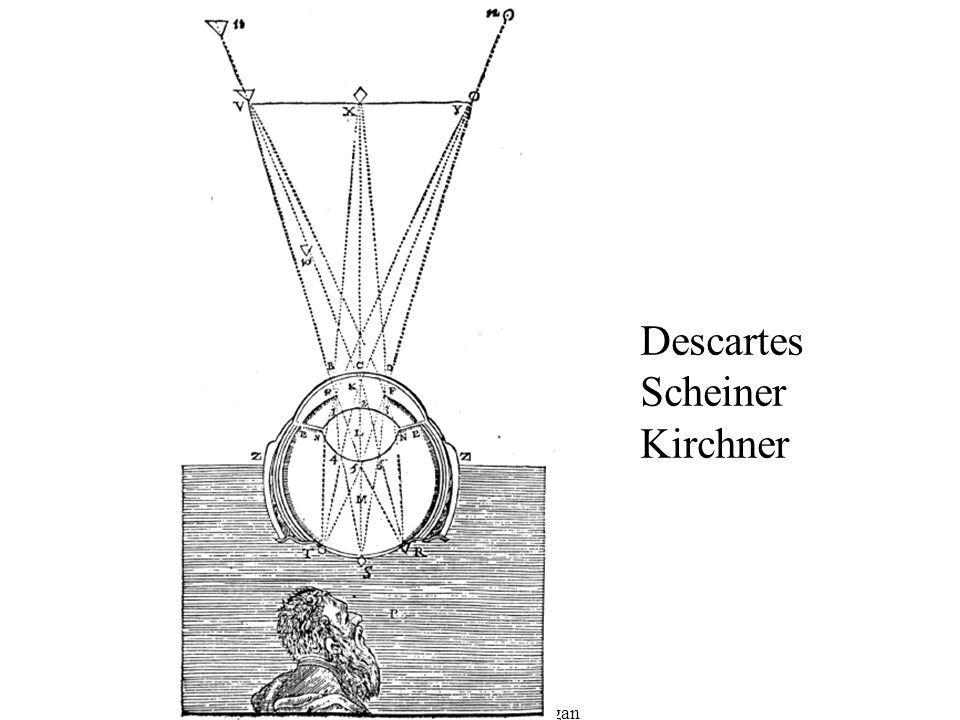 Descartes Scheiner Kirchner