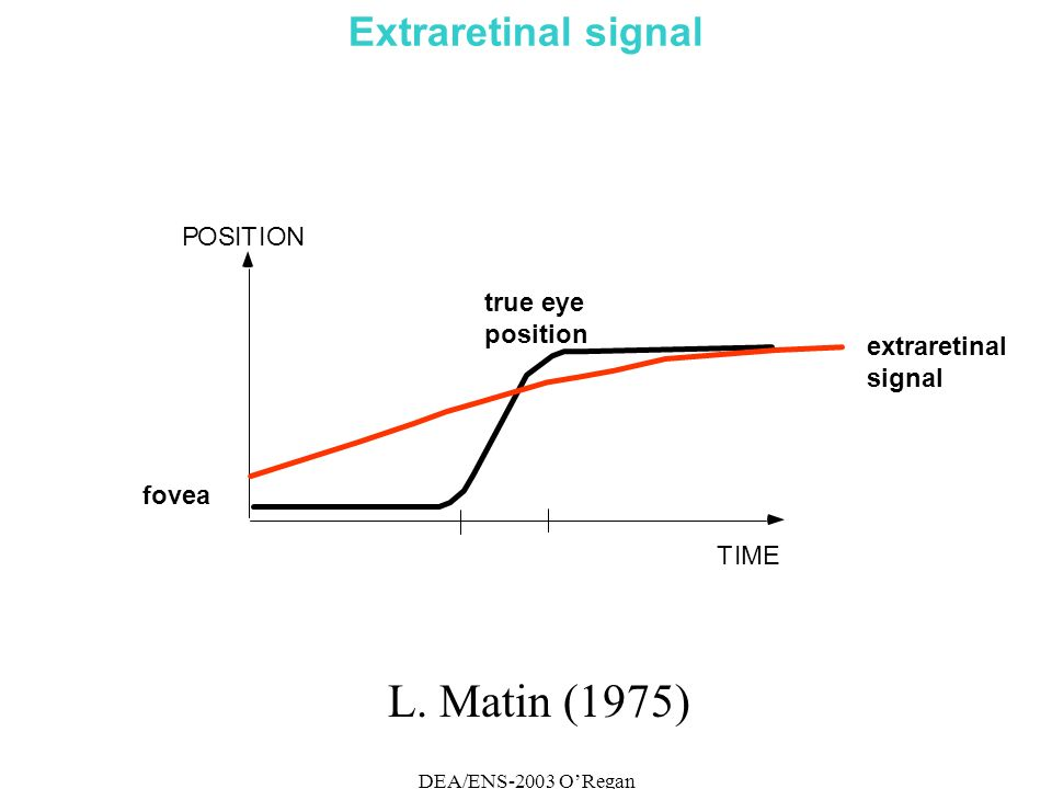 DEA/ENS-2003 ORegan Extraretinal signal POSITION TIME fovea true eye position extraretinal signal L.
